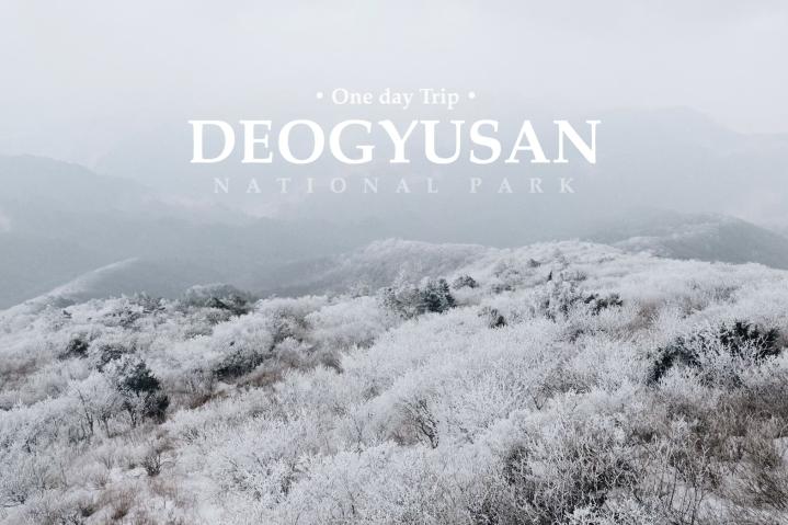 (รีวิวเกาหลี) |  พิชิตภูเขาหิมะ Hyangjeokbong ณ อุทยานแห่งชาติด็อกยูซาน ภูเขาหิมะที่โคตรสวย (One daytrip)
